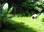 Jardín 4